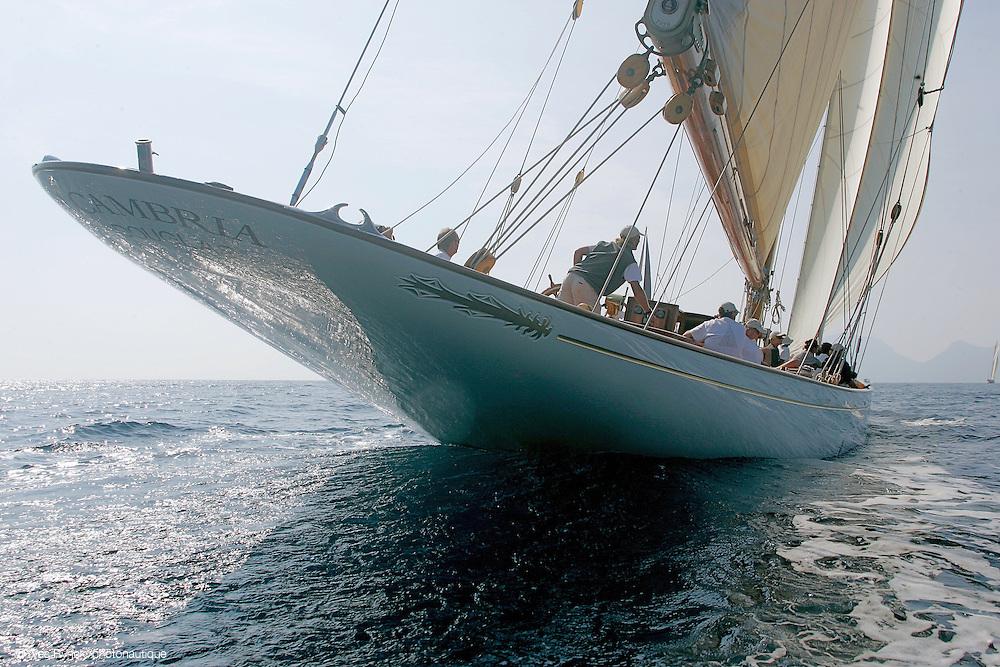 Cambria, voile classique, voile, voilier tradition