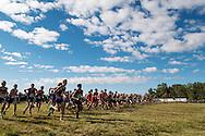 DI varsity boys race. Bob Firman Invitational, September 24, 2016 at Eagle Island State Park, Eagle, Idaho.
