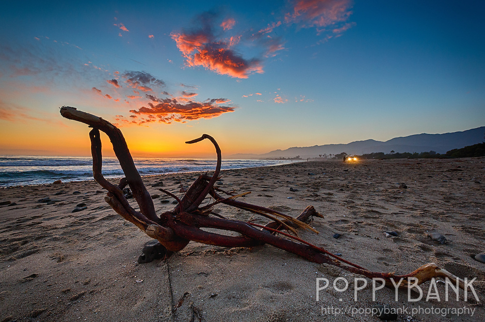 Driftwood rests at sunset on Carpinteria State Beach in California.