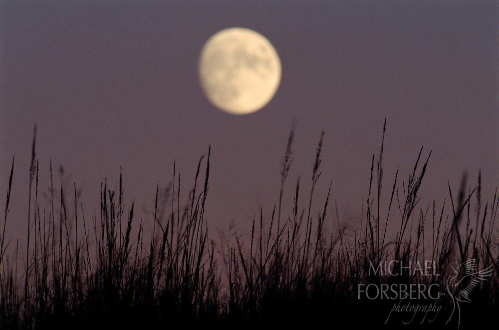 Moon in the Nebraska Sandhills