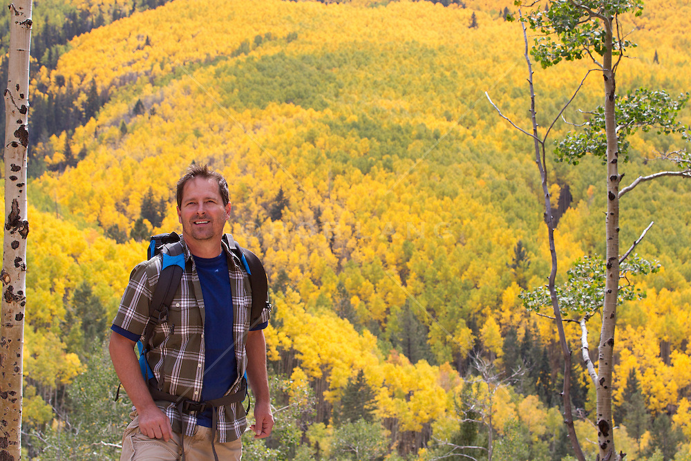 man enjoying a hike in a forest of Aspens during the changing of the leaves in Fall