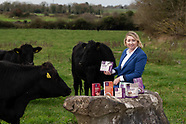 Siobhan Lawless Foods of Athenry