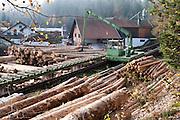 Sägewerk, Bayerischer Wald, Bayern, Deutschland | saw mill, Bavarian Forest, Bavaria, Germany