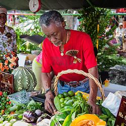 Carnival 2014 Cultural Food Fair