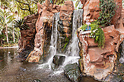 Paradise falls at the Flamingo Hotel & Casino in Las Vegas, NV.