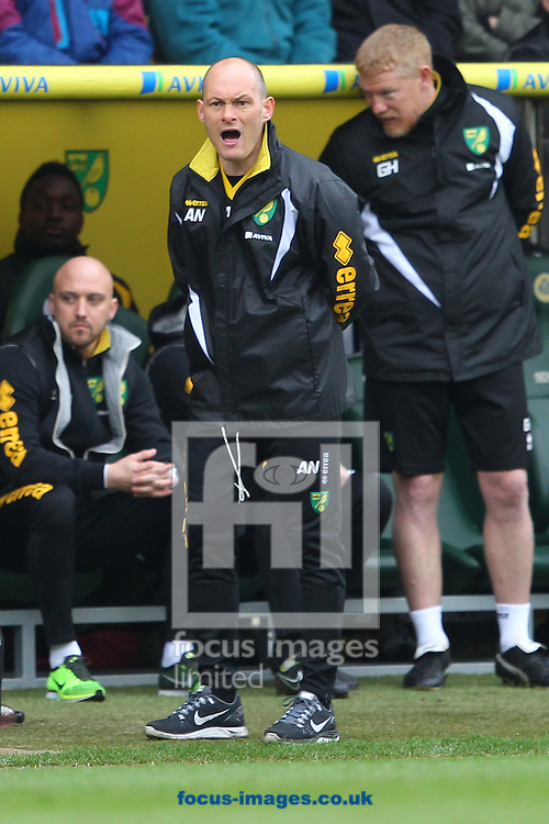 Norwich Manager Alex Neil during the Sky Bet Championship match at Carrow Road, Norwich<br /> Picture by Paul Chesterton/Focus Images Ltd +44 7904 640267<br /> 21/03/2015