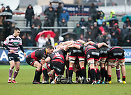 Dragons' Charlie Davies puts in to the scrum<br /> <br /> Photographer Simon King/Replay Images<br /> <br /> Guinness Pro14 Round 11 - Dragons v Cardiff Blues - Tuesday 26th December 2017 - Rodney Parade - Newport<br /> <br /> World Copyright &copy; 2017 Replay Images. All rights reserved. info@replayimages.co.uk - www.replayimages.co.uk