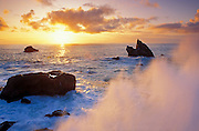 Ocean spray and sea stacks at sunset, Patrick's Point State Park, Humbolt County, California