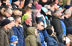 A fan in the stand with a mohawk haircut