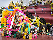 "29 SEPTEMBER 2012 - NAKORN NAYOK, THAILAND: A garlanded statue of Ganesh  at Wat Utthayan Ganesh, a temple dedicated to Ganesh in Nakorn Nayok, about three hours from Bangkok. Many Thai Buddhists incorporate Hindu elements, including worship of Ganesh into their spiritual life. Ganesha Chaturthi also known as Vinayaka Chaturthi, is the Hindu festival celebrated on the day of the re-birth of Lord Ganesha, the son of Shiva and Parvati. The festival, also known as Ganeshotsav (""festival of Ganesha"") is observed in the Hindu calendar month of Bhaadrapada, starting on the the fourth day of the waxing moon. The festival lasts for 10 days, ending on the fourteenth day of the waxing moon. Outside India, it is celebrated widely in Nepal and by Hindus in the United States, Canada, Mauritius, Singapore, Thailand, Cambodia, Burma , Fiji and Trinidad & Tobago.     PHOTO BY JACK KURTZ"