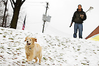Octavian Rivas watches his golden retriever Baxter race down the snowy slope of McEuen Park after tossing a ball with his lacrosse stick Friday.