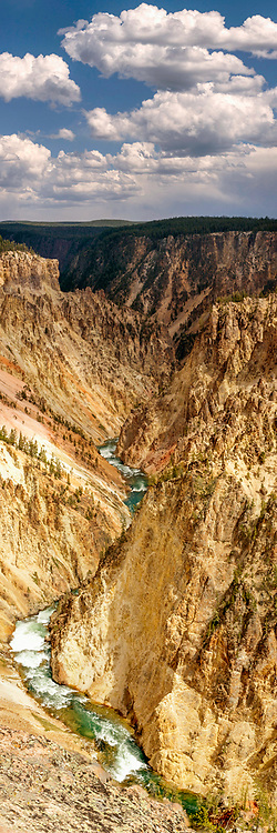 The Grand Canyon of Yellowstone National Park on a summer day.  Limited Edition - 75