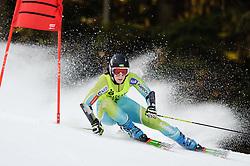03.02.2011, Mirtlerhang, Gaal, AUT, FIS Riesentorlauf, Ladies, im Bild // Katja Jazbec (SLO) // during the women giant slalom race at the FIS races in Gaal, EXPA Pictures © 2011, PhotoCredit: EXPA/ S. Zangrando