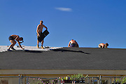 Workmen installing a new roof of asphalt shingle