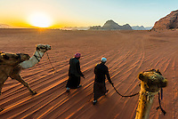 Bedouin men and camels, Arabian Desert, Wadi Rum, Jordan.