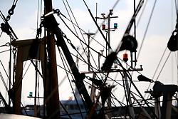 UK CORNWALL NEWLYN 9JUN08 - View of masts and fishing gear at Newlyn harbour in Cornwall, western England...jre/Photo by Jiri Rezac / WWF UK..© Jiri Rezac 2008..Contact: +44 (0) 7050 110 417.Mobile:  +44 (0) 7801 337 683.Office:  +44 (0) 20 8968 9635..Email:   jiri@jirirezac.com.Web:    www.jirirezac.com..© All images Jiri Rezac 2008 - All rights reserved.