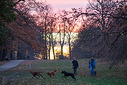 © Licensed to London News Pictures. 03/12/2019. London, UK. Sunrise during a cold and crisp morning Greenwich Park. Temperatures will continue to drop to 2° this evening.   Photo credit: George Cracknell Wright/LNP