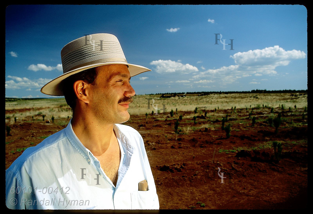 Yugoslavian immigrant Zel Bodulovic gazes across pine nursery in New South Wales, his new home. Australia