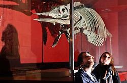 Natural History Museum, London, UK. 17/01/2014<br /> Katia Hickmer and Kevin Dacey, from London, settle down for the night by an exhibit of a marine dinosaur, and ancestor of the dolphin, in the main hall of the Natural History Museum in London. The 'Dino Snore' sleepover event allowed paying adults to spend the night inside the museum, where people could sleep among the dinosaur exhibits along with activities such as eating edible bugs and a lecture on the sex lives of insects.<br /> Photo: Anna Branthwaite/LNP