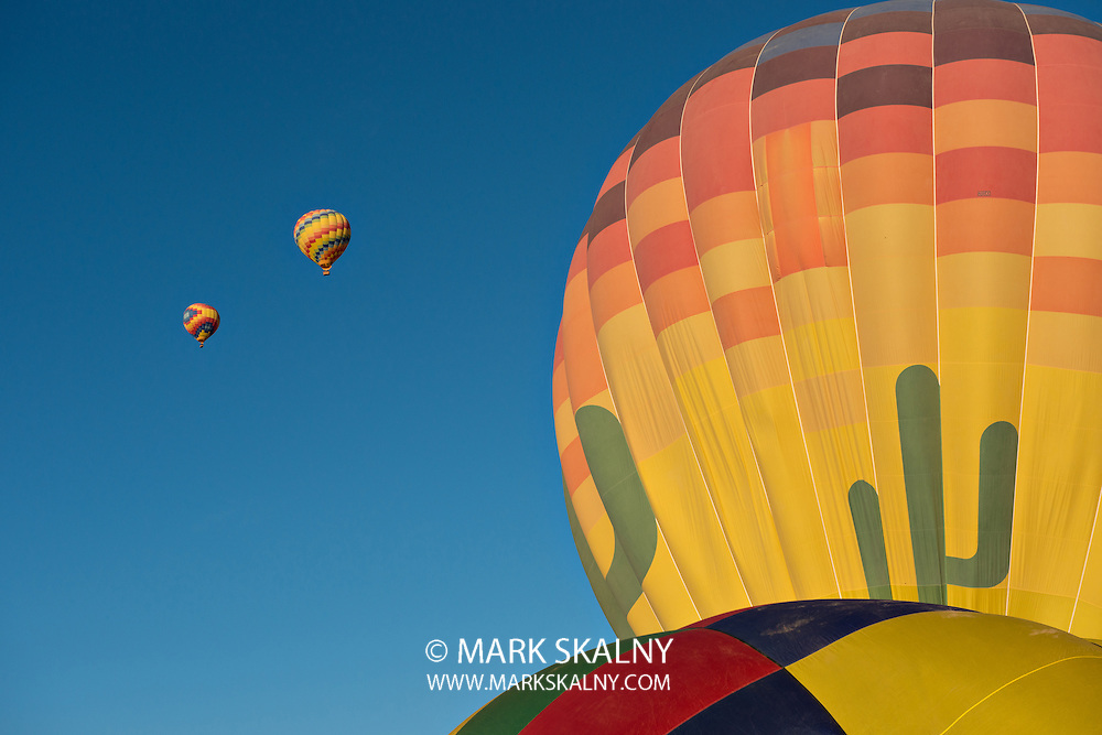 Several hot air balloons just after lift off.  Set against a deep blue sky.