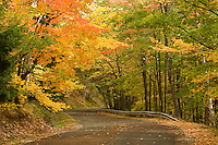 WI00014-00...WISCONSIN - Autumn foliage along the road up Rib Mountain in Rib Mountain State Park.