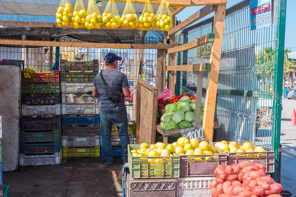 Coquimbo, Chile--April 7, 2018. A shopper examines the produce at a market in the port city of Coquimbo, Chile.  Editorial Use Only.