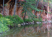 West Fork, Oak Creek Canyon, Summer
