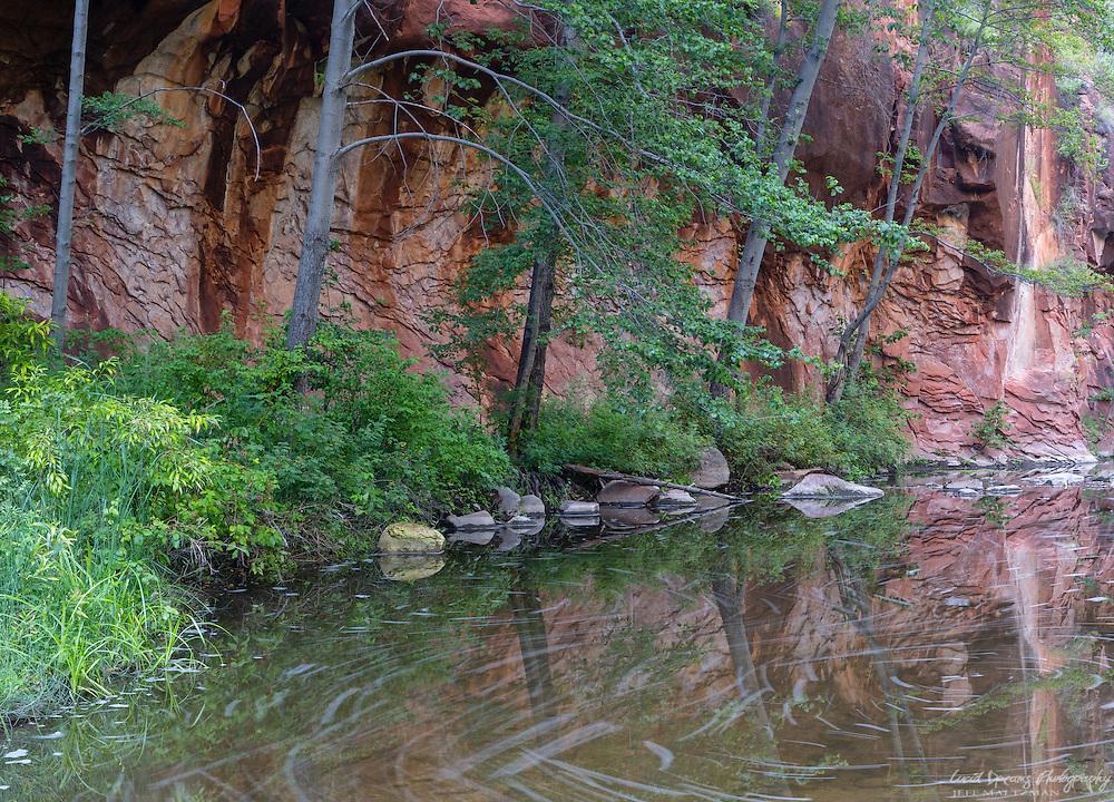 West Fork, Oak Creek Canyon, Summer