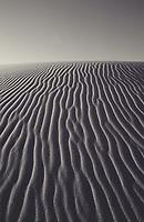 Oregon coast sand dunes