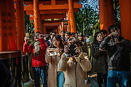 Tourists, mostly from China, block the way through a tunnel created by thousands of torii gates to make snapshots at Fushimi Inari Taisha Shrine in Kyoto, Japan.  Man on left uses a so-called selfie-stick projecting out into the flow of pedestrian traffic at eye level, which has resulted in some places to prohibit their use.