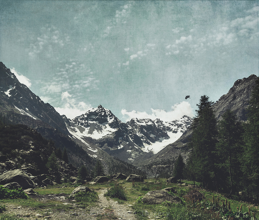 Alpines Tal mit Blick auf Gletscher, Chiareggio, Lomabardei, Italien<br /> Society6 prints: https://society6.com/product/high-valley-alps_print#1=45