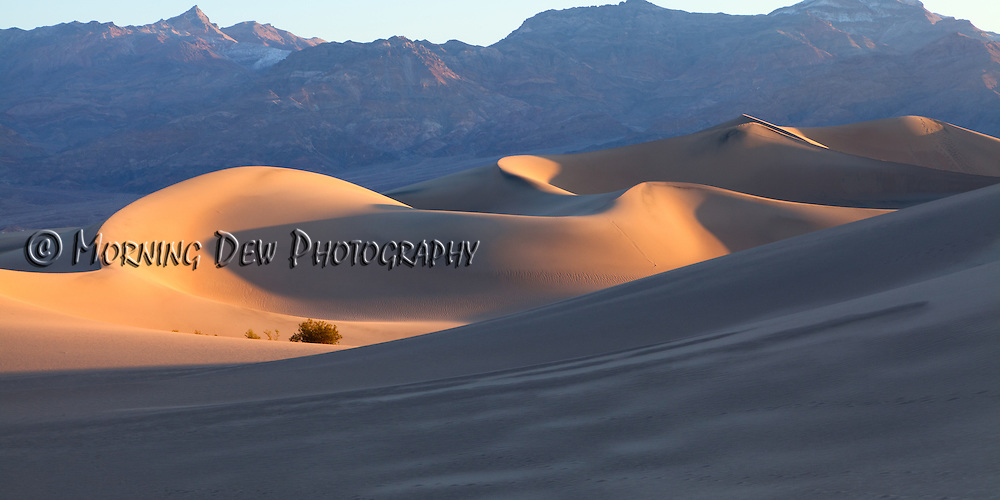 Early morning sunlight creeps into the wind swept depressions of Death Valley's dune field.