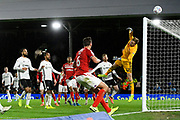 Marek Rodak (12) of Fulham makes a save during the EFL Sky Bet Championship match between Fulham and Middlesbrough at Craven Cottage, London, England on 17 January 2020.