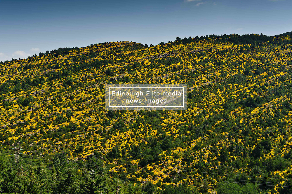The pyrenees near Jaca<br /> <br /> (c) Andrew Wilson | Edinburgh Elite media