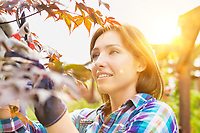 Portrait of beautiful gardener cutting tree branches in the garden