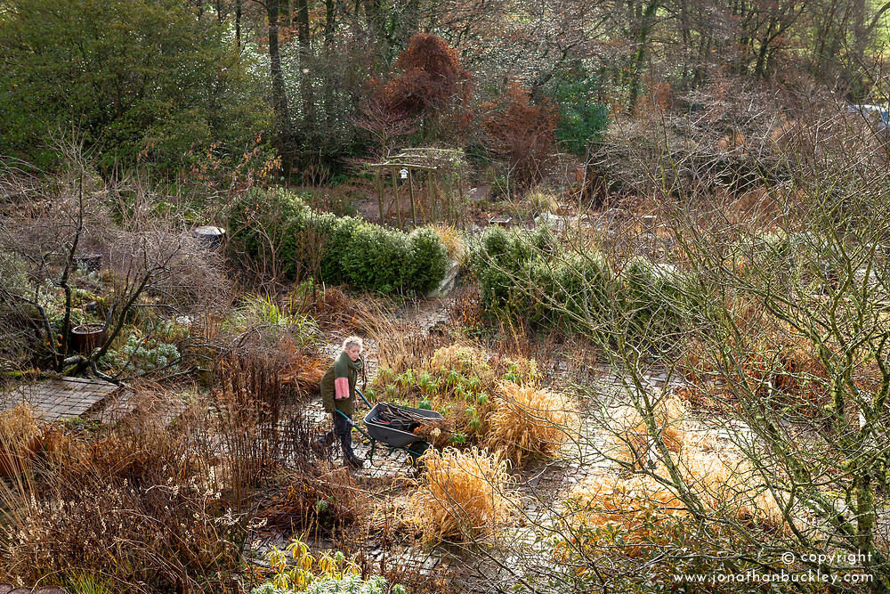 Overhead view of the garden at Glebe Cottage in January with Carol pushing a wheelbarrow