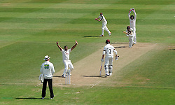 Nottinghamshire's Samit Patel unsuccessfully appeals for the LBW of Somerset's Tom Abell. - Photo mandatory by-line: Harry Trump/JMP - Mobile: 07966 386802 - 16/06/15 - SPORT - CRICKET - LVCC County Championship - Division One - Day Three - Somerset v Nottinghamshire - The County Ground, Taunton, England.