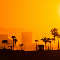 Newport Beach skyline sunrise panorama photo in Orange County Southern California. Panoramic photo ratio is 1:3 and includes Newport Beach office buildings in Fashion Island, palm trees and mountains.