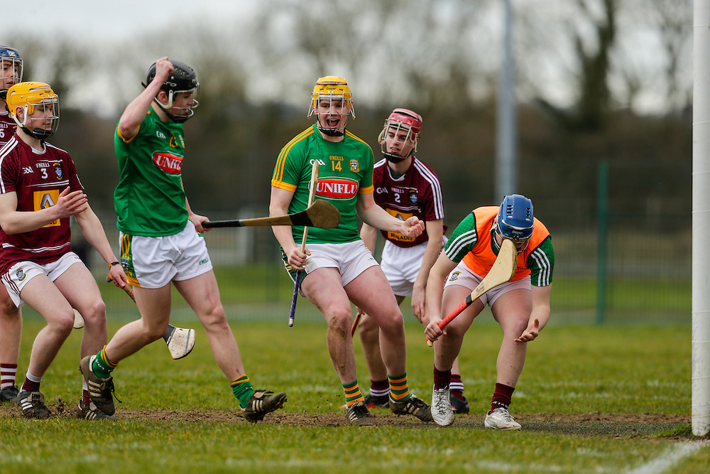 Leinster MHC at Dunganny, Trim, 12th March 2016<br /> Meath vs Westmeath<br /> Meaths Peter Farrell celebrates a second half goal in the Leinster MHC against Westmeath<br /> Photo: David Mullen /www.cyberimages.net / 2016