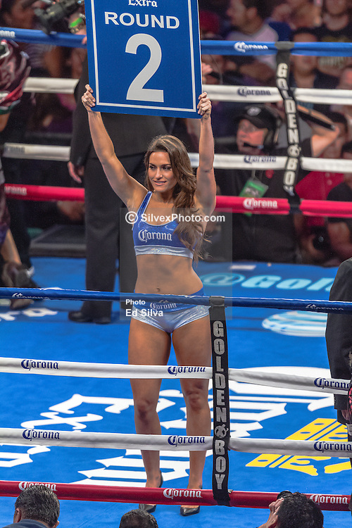 CARSON, California/USA (Saturday, Aug 24 2013) - Corona ring girl announces round 2 of the Terrazas vs Santa Cruz bout at the StubHub Center in Carson California. Leo Santa Cruz (25-0-1, 15 KOs) won by TKO in the 3rd round after Victor Terrazas (37-3-1, 21 KOs) hit the canvas and complained his right eye was shut.Referee Lou Moret called it off at 2:09 of the 3rd round and Leo Santa Cruz claimed the WBC junior featherweight title  by TKO at The StubHub Center in Carson, CA.  PHOTO © Eduardo E. Silva/SILVEXPHOTO.COM.