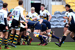 Worcester Warriors U18 power their way over the try line for Beck Cutting (Bromsgrove School) of Worcester Warriors U18 to score a try - Mandatory by-line: Robbie Stephenson/JMP - 22/01/2017 - RUGBY - Sixways Stadium - Worcester, England - Worcester Warriors U18 v Northampton Saints U18 - Premiership Rugby U18 Academy League
