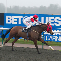 Waterloo Dock and Danny Brock winning the 4.05 race