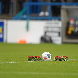 TELFORD COPYRIGHT MIKE SHERIDAN Remembrance Day tributes laid on the centre circle prior to the Vanarama National League Conference North fixture between AFC Telford United and Boston on Saturday, November 2, 2019.<br /> <br /> Picture credit: Mike Sheridan/Ultrapress<br /> <br /> MS201920-028