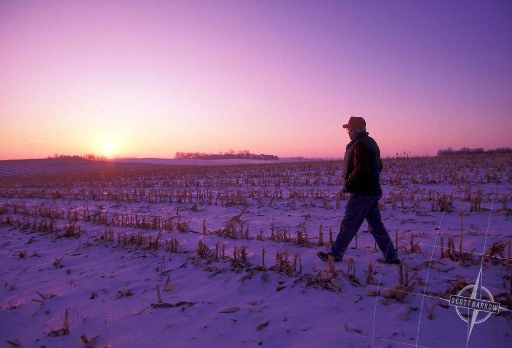 Farmer in winter, cornfield