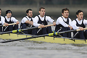 Putney, GREAT BRITAIN,   left to right Douglas BRUCE, 3.Michal PLOTOWIAK, 4. David HOPPER, 5. Aaron MARCOVY, 6. Ben HARRISON, 7. Sjoerd HAMBURGER, Stroke Colin SMITH, during the 2008 Varsity/Oxford University [OUBC] Trial Eights, raced over the championship course. Putney to Mortlake, on the River Thames. Thurs. 11.08.2008 [Mandatory Credit, Peter Spurrier/Intersport-images]. Varsity Boat Race, Rowing Course: River Thames, Championship course, Putney to Mortlake 4.25 Miles,