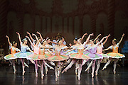 Bay Pointe Ballet performs the Nutcracker at the San Mateo Performing Arts Center in San Mateo, California, on December 21, 2013. (Stan Olszewski/SOSKIphoto)