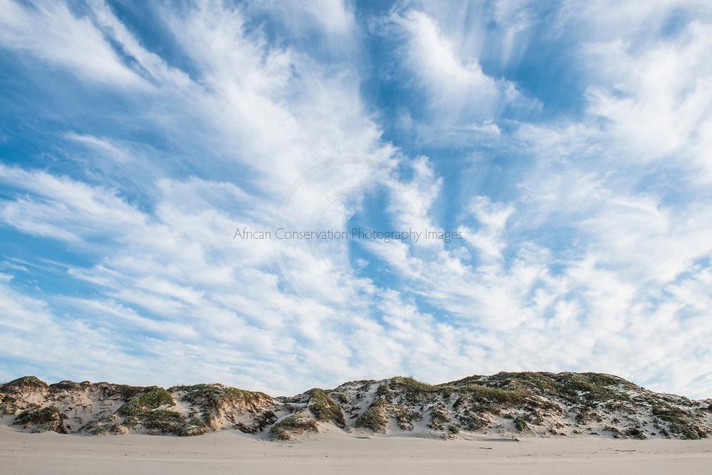 Coastal dunefields, De Mond Nature Reserve, Western Cape, South Africa