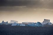Icebergs near Petermann Island, Antarctica.
