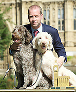 Westminster Dog of the Year 2016 <br /> in Victoria Tower Gardens, London, Great Britain <br /> 8th September 2016 <br /> organised by The Kennel Club and Dogs Trust together with dog loving MPs and Peers. <br /> <br /> Winners:<br /> <br /> 1st - Jonathan Reynolds MP with his dogs Clinton (light colour)  and Kennedy (dark colour)<br /> <br /> <br /> <br /> <br /> Photograph by Elliott Franks <br /> Image licensed to Elliott Franks Photography Services