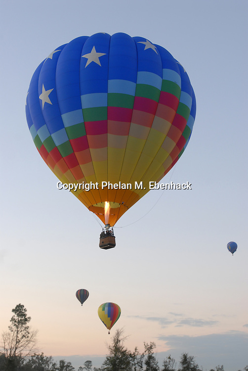 Hot air balloons take flight as the sun rises at a field in Kissimmee, Florida.